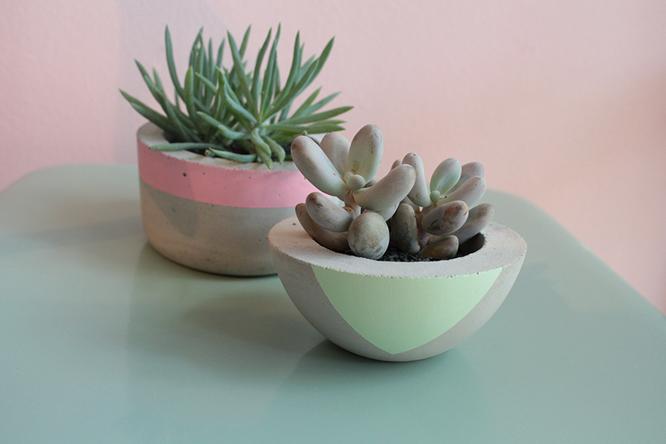 plantas-verdin-modefica-offline