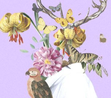 ecofeminismo-daniela-rosendo-02-especicismo-genero-02