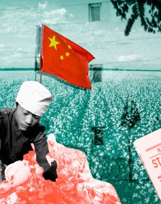 trabalho algodão china Xinjiang